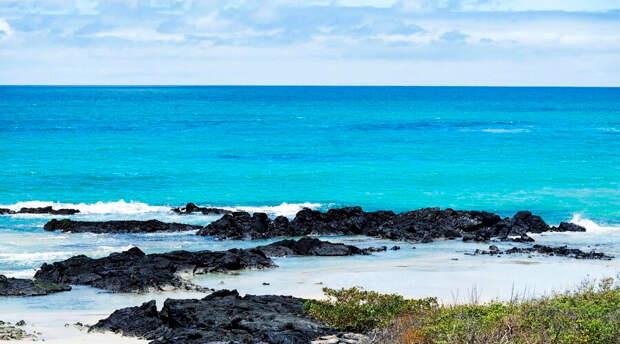 Галапагосские острова лишились одного из символов архипелага