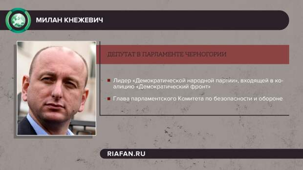 Депутат Милан Кнежевич