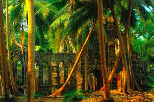 Цивилизация, поглощенная джунглями. Жуткая история острова Росс