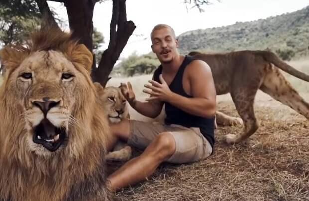 Видео: Как приручить любое животное