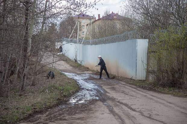 В Перми экологи прорыли под забором лазы для серых жаб