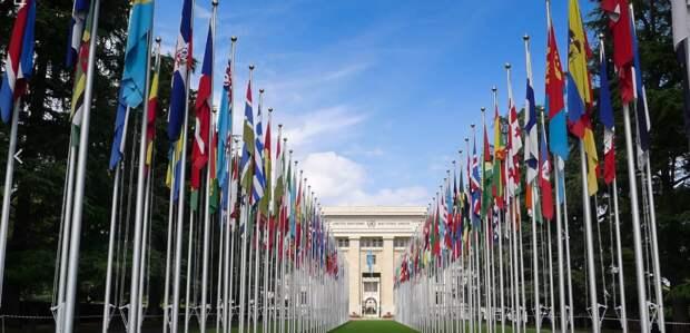 Никто не воспринимает всерьез: глава ФНЗЦ напомнил об «импотенции ООН»