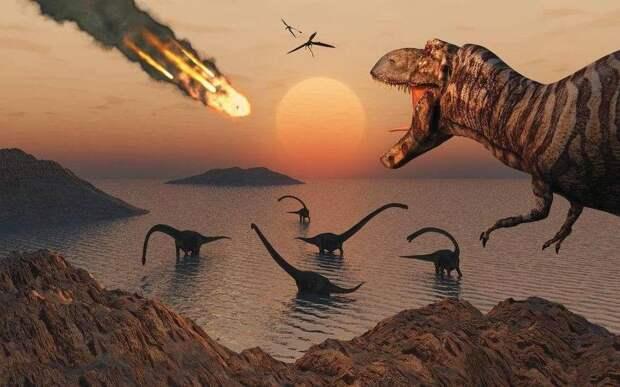 Учёные обнаружили останки уникального «ночного» динозавра