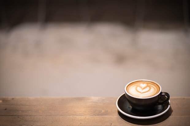 Проект по строительству кафе на Абрамцевской реализовывать не будут