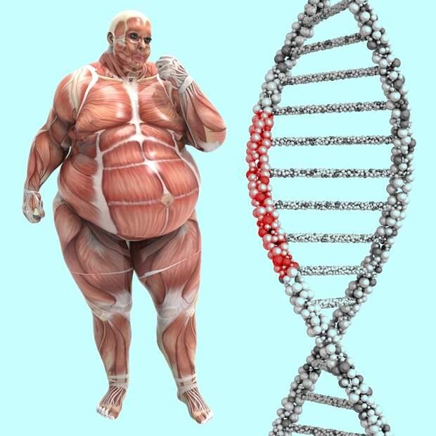 10 неожиданных вещей, о которых может рассказать ваша ДНК