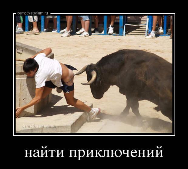 5402287_demotivatorium_ru_najti_prikluchenij_114967 (600x540, 119Kb)