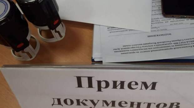 В Приморье 369 человек подали заявления на участие в праймериз «Единой России»