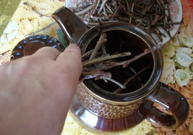чай из вишневых веточек польза