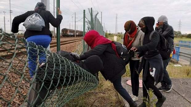 Миграционное оружие Батьки