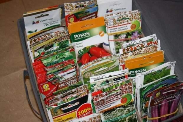 чемодан с семенами