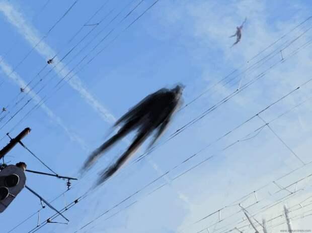 http://paranormal-news.ru/_nw/87/s37154679.jpg