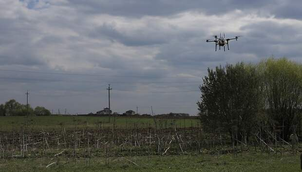 В Подольске признали успешным опыт борьбы с борщевиком с помощью аргодрона