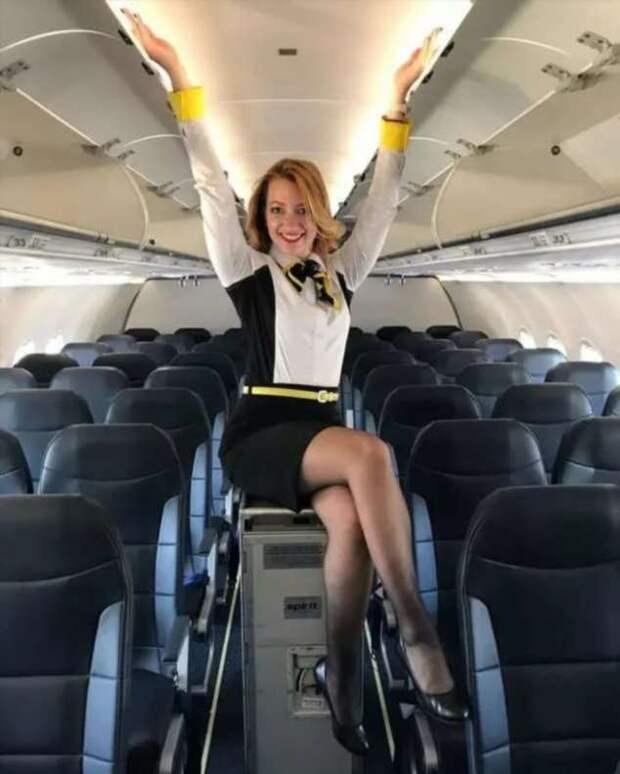Ножки стюардесс. Подборка chert-poberi-styuardessy-chert-poberi-styuardessy-34370108022021-6 картинка chert-poberi-styuardessy-34370108022021-6