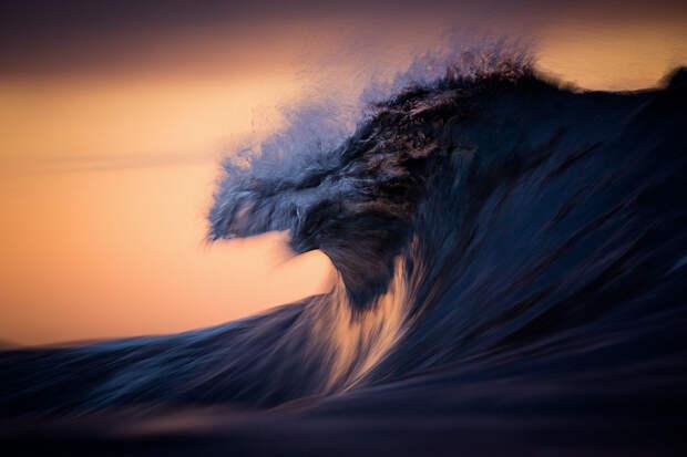 Лучшие фотографии природы фотоконкурса Siena International Photography Awards 2016 23