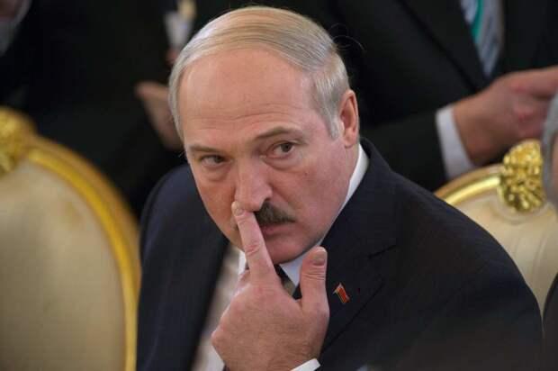 Лукашенко не сможет сохранить власть через конституционную реформу – эксперт