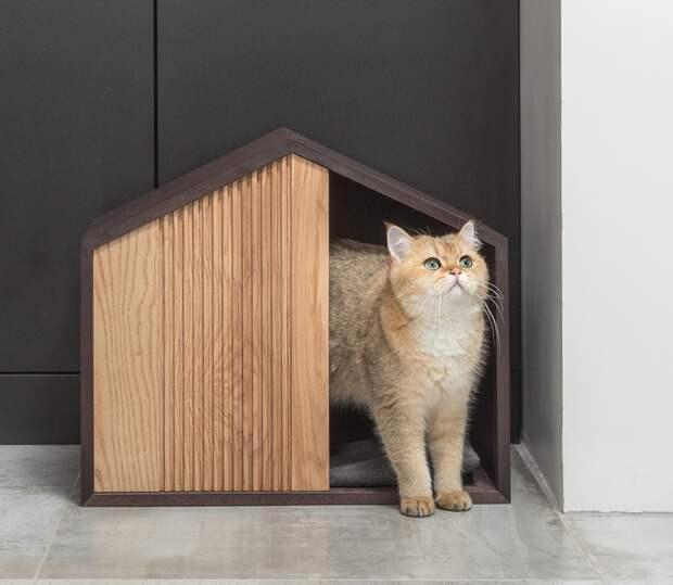 Как выбрать мебель для кошек и собак и не испортить интерьер? Подборка стильных решений