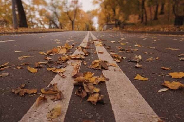 Синоптик предупредил москвичей о низкой температуре и плотном ветре