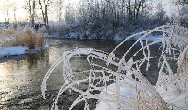 Штормовое предупреждение объявили в Ростове из-за морозов на 25 и 26 апреля