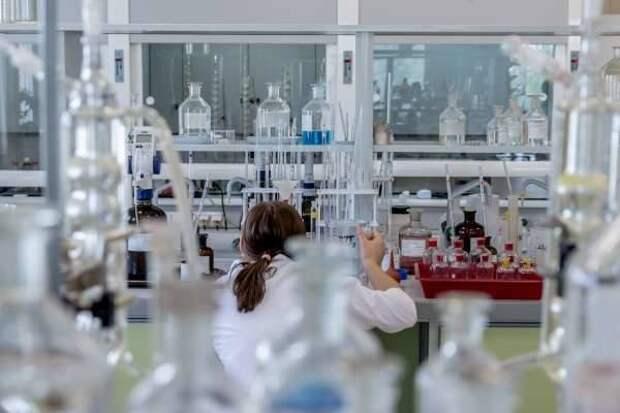 Иммунная система человека покрывает спайковый белок SARS-CoV-2 антителами
