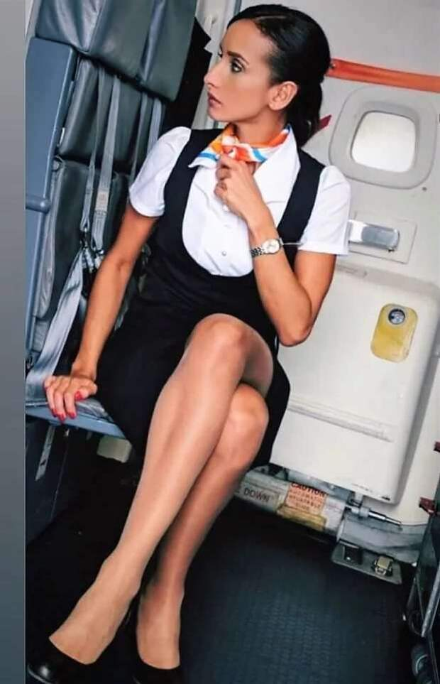 Ножки стюардесс. Подборка chert-poberi-styuardessy-chert-poberi-styuardessy-34370108022021-4 картинка chert-poberi-styuardessy-34370108022021-4
