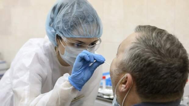 Названы главные различия ПЦР и экспресс-тестов на коронавирус