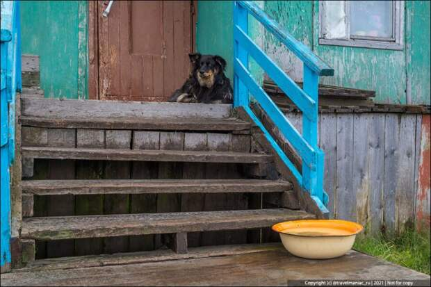 Зачем люди на Севере ставят тазики около подъездов своих домов