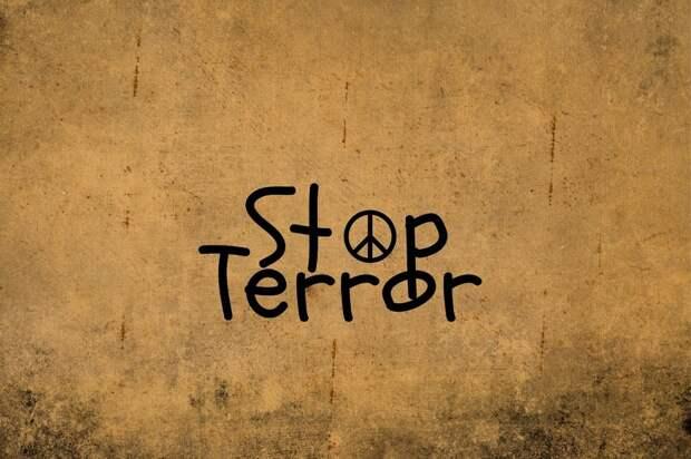 Жителям Москвы рассказали о правилах поведения во время террористических актов Фото: pixabay.com