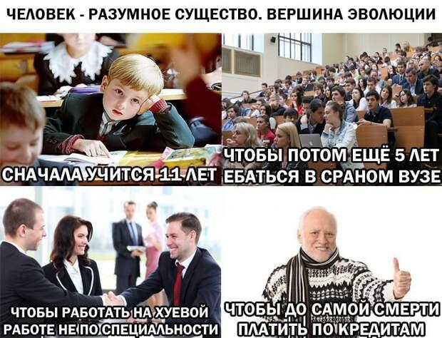 CFgobQi1Vks