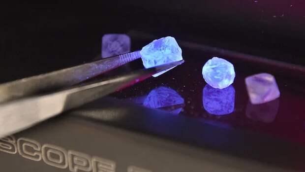 Бриллиантовые трусы: сотрудница «Алросы» вынесла внижнем белье алмазов на300 млн рублей