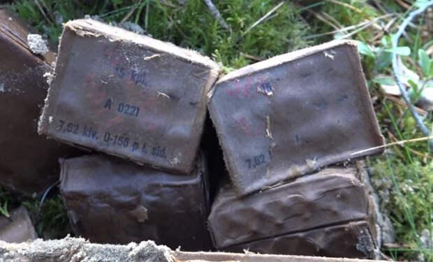 Копатели погрузились в болота Карелии: военные артефакты с финской границы