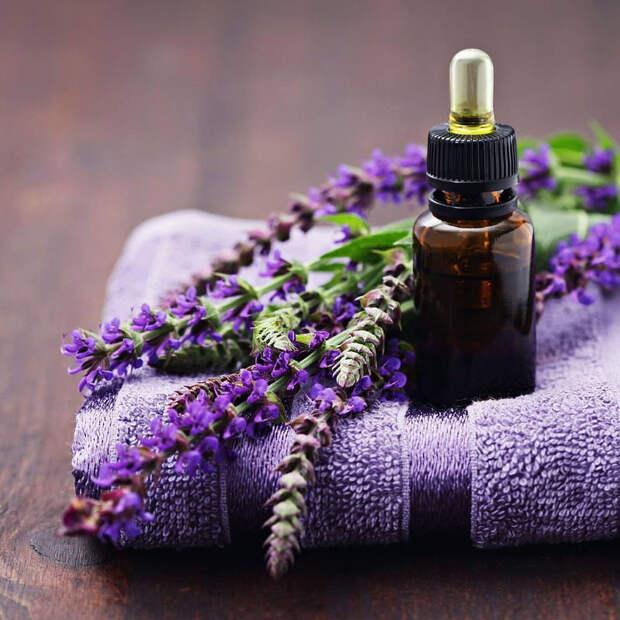 Лекарственные растения, аромат которых способен на самые невероятные исцеления!
