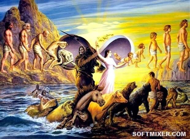 Неразрешённые загадки эволюции