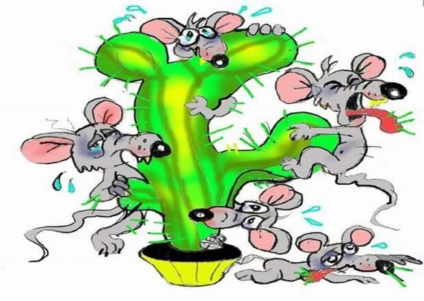 Европейские мыши плакали кололись, но продолжали жрать американский кактус антироссийских санкций