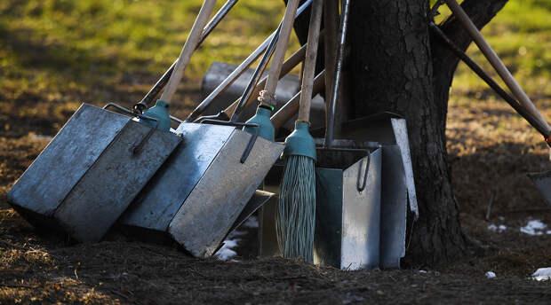 Весна с чистого листа: почему субботник – больше, чем просто уборка