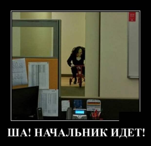 Забавные и прикольные демотиваторы понедельника (13 фото)