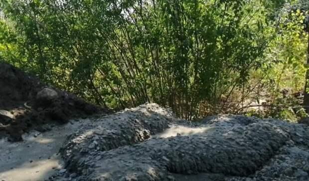 В районе ДОКа тюменцы сами садят деревья и требуют от управы убрать мусор