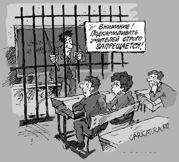 Бедные учителя - с хлеба на квас перебиваются