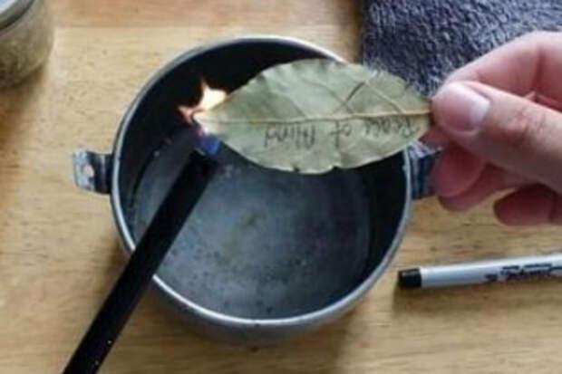 Поджигаем лавровый лист: хитрость которой тысячи лет