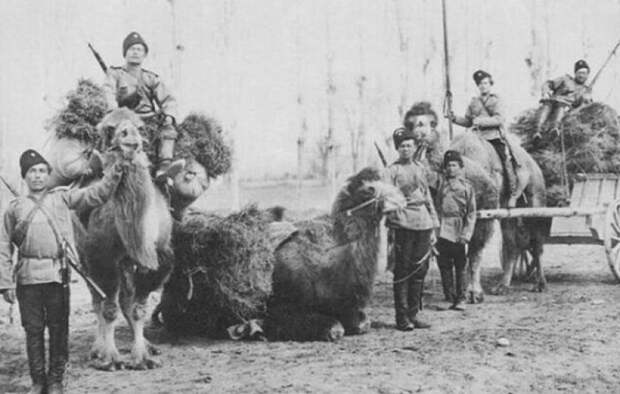 Казаки в Средней Азии