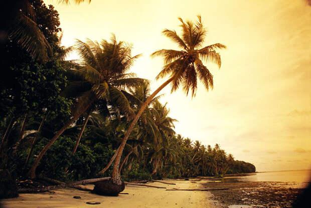 Австралиец выиграл тропический остров в онлайн-лотерее