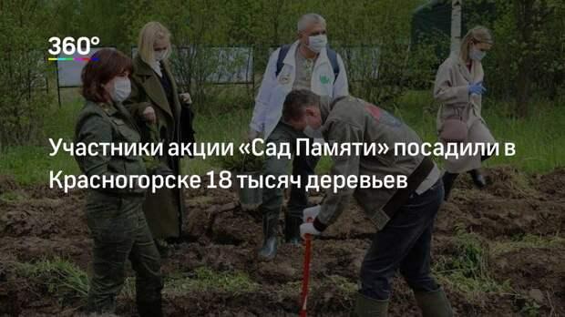 Участники акции «Сад Памяти» посадили в Красногорске 18 тысяч деревьев