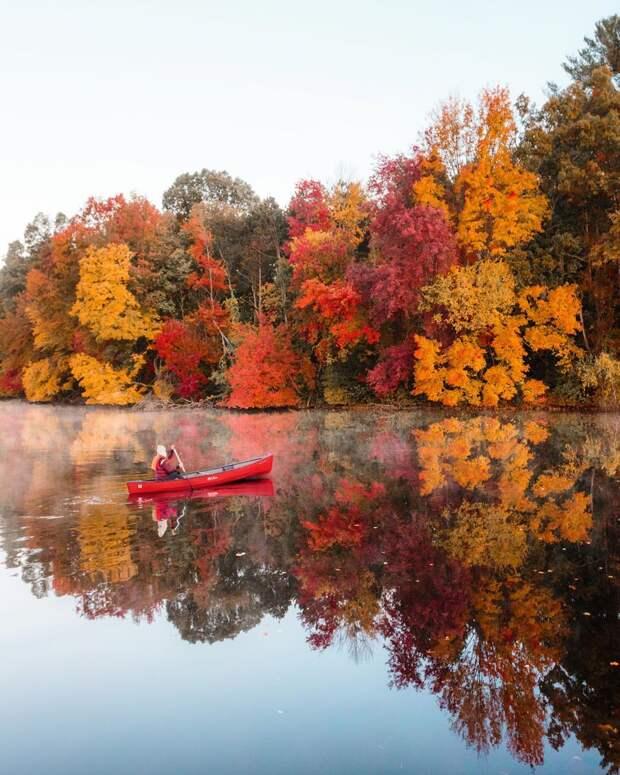Краски планеты на тревел-снимках Райана Ресатки