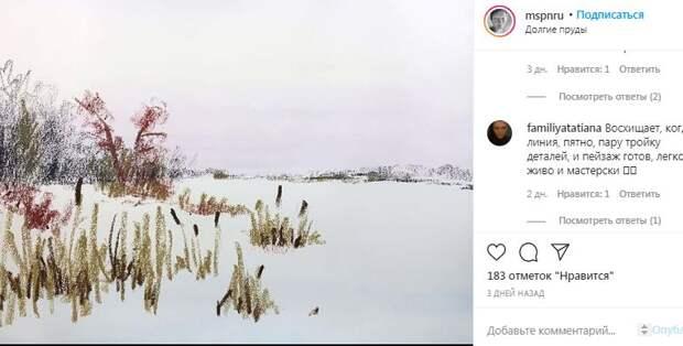 Художница из Северного подумывает о создании серии «300 видов Долгих прудов»