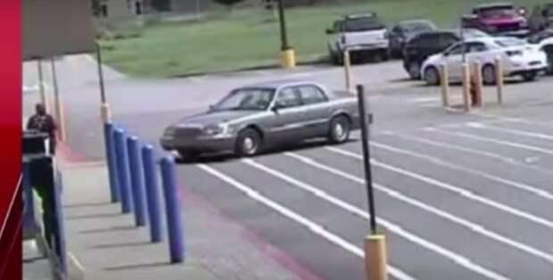 Собачье дело: домашние питомцы угнали автомобиль