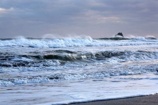 Что могло привести к экологической катастрофе в Тихом океане у Камчатки