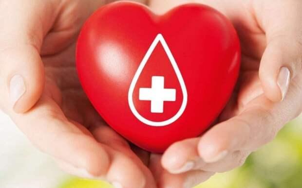 В день донора волонтеры из СЗАО сдали кровь в ГКБ №52