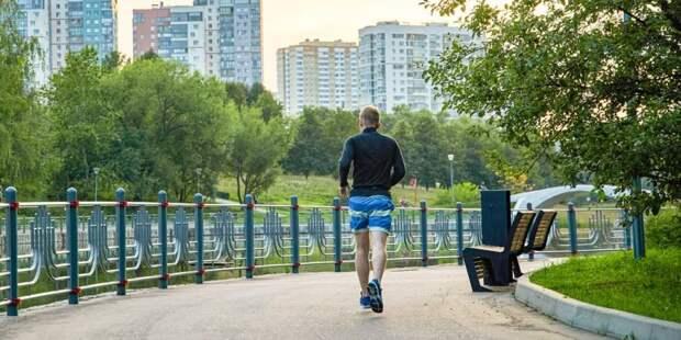 Проекты НКО дают возможность москвичам заниматься спортом бесплатно. Фото: М. Денисов mos.ru