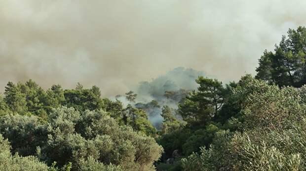 Власти Греции разместят жителей горящих районов Аттики в гостиницах