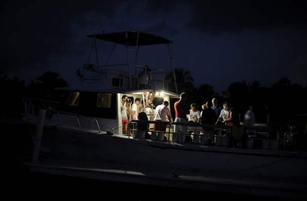 дайвинг каймановы острова