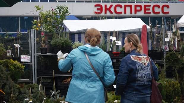 Весенний сад зацветет впарке имени Вити Черевичкина